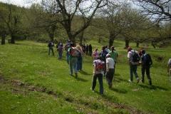2010 - Escursione campana al parco Diecimare