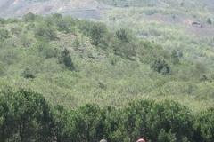 2011 - Escursione sul Vesuvio